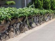 坂口造園1.jpg
