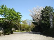 桂造園4.jpg