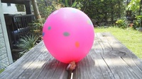 d.balloon2.JPG