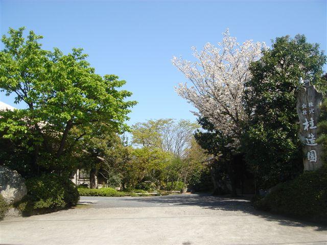 http://www.oniwanotakumi.com/takumi/14katsura-4.jpg